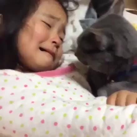 Giornata mondiale del bacio eccoci bestiaccia pubblicata for Giornata mondiale del bacio 2018